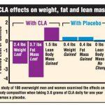 Μελέτη: CLA για μείωση λίπους