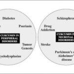 Επισκόπηση της κουρκουμίνης στις νευρολογικές διαταραχές